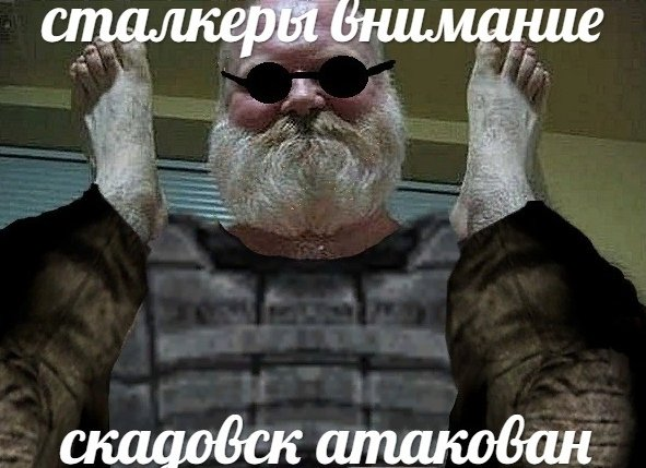 Po_OPHizi1k.jpg.1f4b49b88d654c566d61a664913324fb.jpg